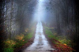Path by Pixabay